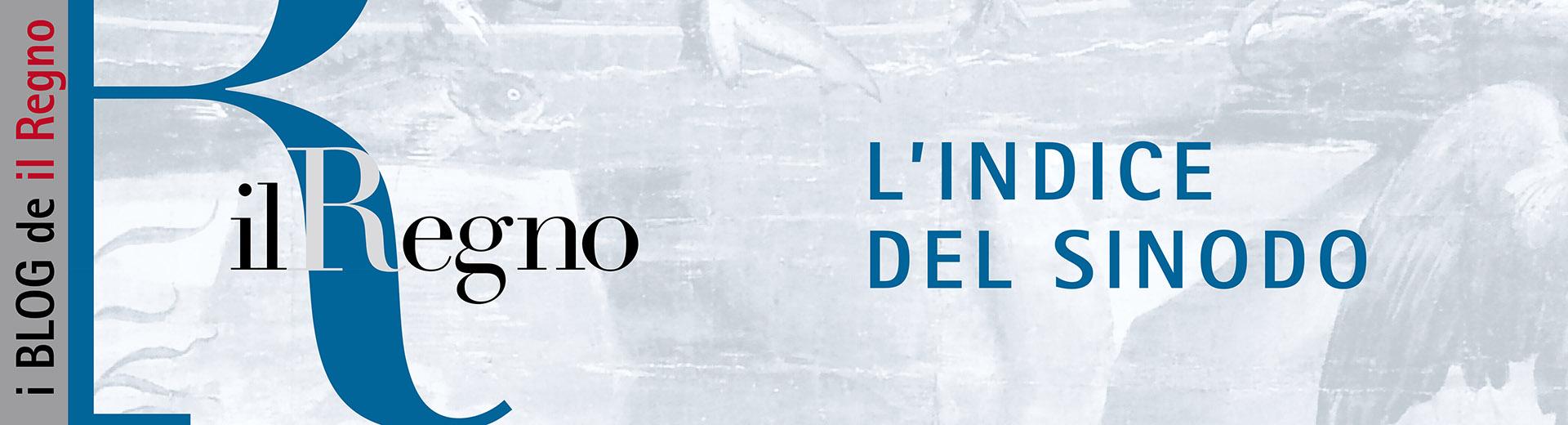 Blog Sinodo banner