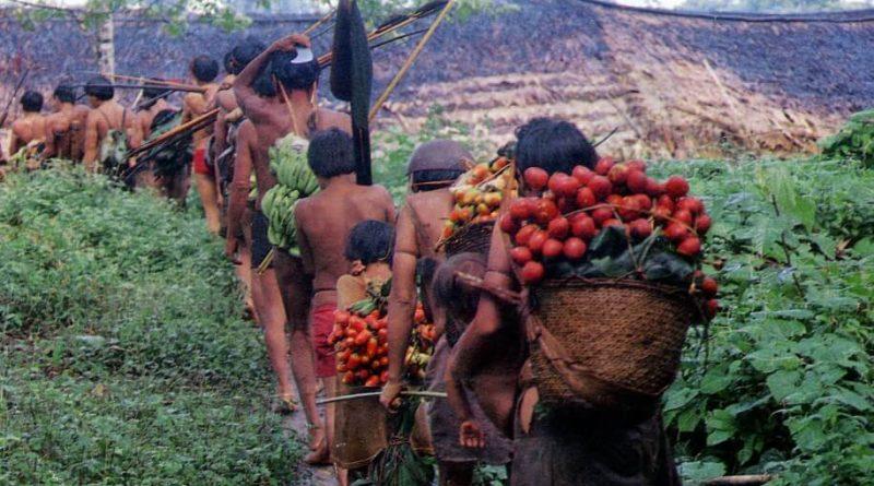 Difendere dal Covid-19 anche l'Amazzonia